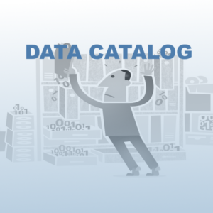Metadata structureren met Data Catalog